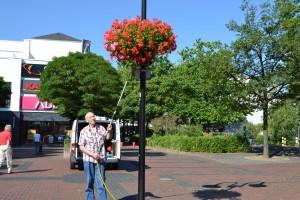 Herr Krummel Blumen