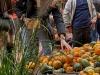 2019_10_12-Herbstmarkt_161