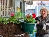 2021_04_26-Blumenamplen-in-der-Hildener-City_014