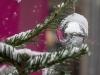 2017-Hildener-Winterdorf-und-Weihnachtsmarkt_078