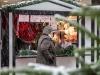 2017-Hildener-Winterdorf-und-Weihnachtsmarkt_095
