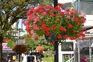 1. Blumenkübel