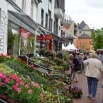 Mai 2015 Hildener Frühling